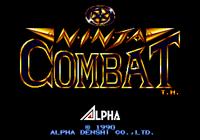 Video Game: Ninja Combat