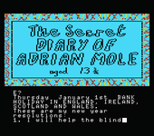 Video Game: The Secret Diary of Adrian Mole Aged 13¾