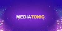 Video Game Publisher: Mediatonic