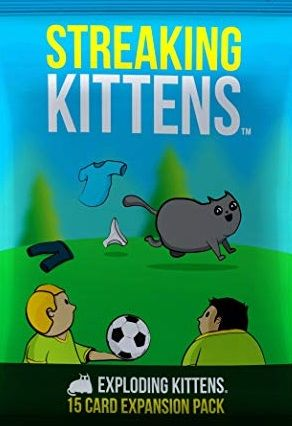 Streaking Kittens Exploding Kittens Second Expansion Pack Game NEW