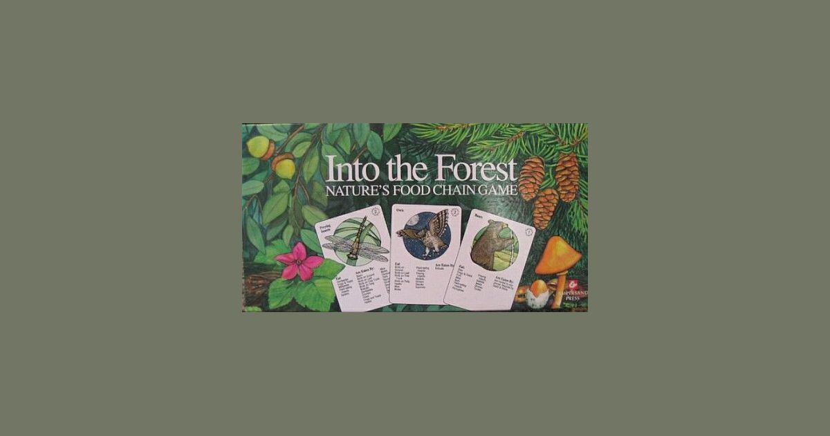 Into the forest, ampersand press | Into the Forest | BoardGameGeek