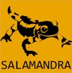 Video Game Developer: salamandra88
