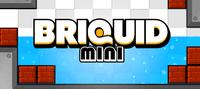 Video Game: Briquid Mini