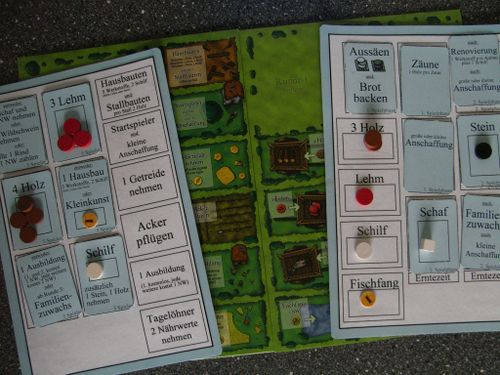Board Game: Agricola