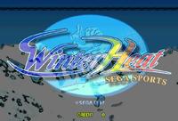 Video Game: Winter Heat