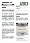 RPG Item: Adventskalender 2012 - 01: Tamboris Narrenkostüm