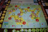Board Game: 18CZ