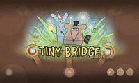 Video Game: Tiny Bridge: Rat Adventure