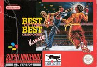 Video Game: Best of the Best: Championship Karate