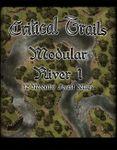 RPG Item: Critical Trails: Modular River 1