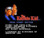 Video Game: The Karate Kid