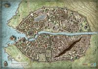 RPG Item: Neverwinter Campaign Map