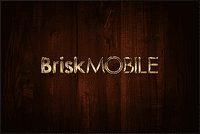 Video Game Publisher: Brisk Mobile