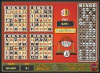 Video Game: Bingo