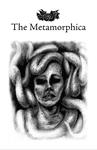 RPG Item: The Metamorphica