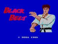 Video Game: Black Belt