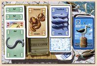 Board Game: Cash-a-Catch