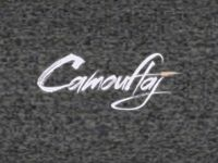 Video Game Publisher: Camouflaj