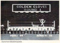 Video Game: Golden Gloves