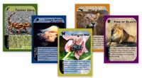 Board Game: Untamed: A Rummy Revolution