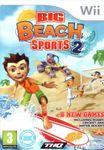 Video Game: Big Beach Sports 2