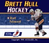 Video Game: Brett Hull Hockey