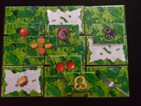 Board Game: Point Salad: The Salad-Building Game