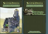 Board Game: Snowdonia: The Necropolis Railway & Neuhauser Bockerlbahn