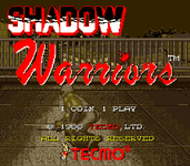 Video Game: Shadow Warriors