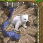 Board Game: Zooloretto: Polar Bear