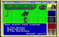 Video Game: King's Bounty