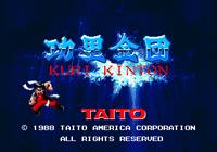 Video Game: Kuri Kinton