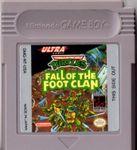Video Game: Teenage Mutant Ninja Turtles: Fall of the Foot Clan