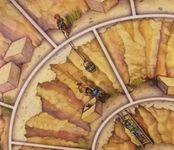 Board Game: World Monuments