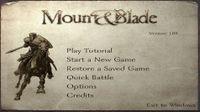 Video Game: Mount & Blade