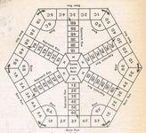 Board Game: Antheap