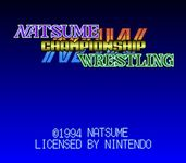 Video Game: Natsume Championship Wresting