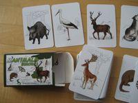 Board Game: Manimals: Europa 1