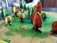 Board Game: Photosynthesis
