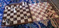 Board Game: Alice Chess