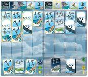 Board Game: Migrato