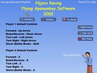 Video Game: Pájaro Racing