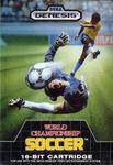 Video Game: World Championship Soccer