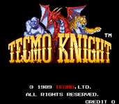 Video Game: Tecmo Knight