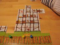 Board Game: Les Cabanes de M'sieur Robinson