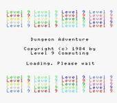 Video Game: Dungeon Adventure