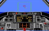 Video Game: Tomcat: The F-14 Fighter Simulator