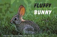 RPG Item: Fluffy Bunny