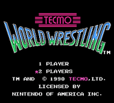 Video Game: Tecmo World Wrestling