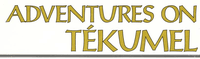 Series: Adventures on Tékumel